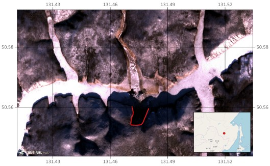 Снимок со спутника Sentinel-2B от 12.12.2018 . Сплошной красной линией  показаны контуры оползня, возникшего на левом (южном) берегу водохранилища. На врезке красной точкой отмечено водохранилище Бурейской ГЭС.